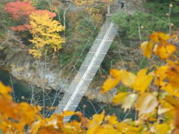 別角度の夢の吊橋