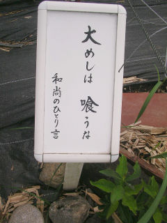 20070711t