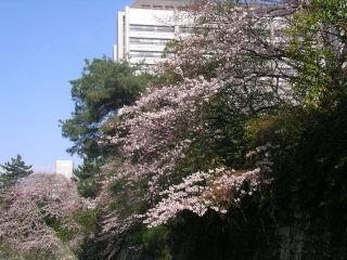 20100326a