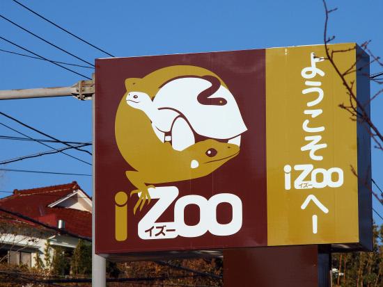 Izoo_1