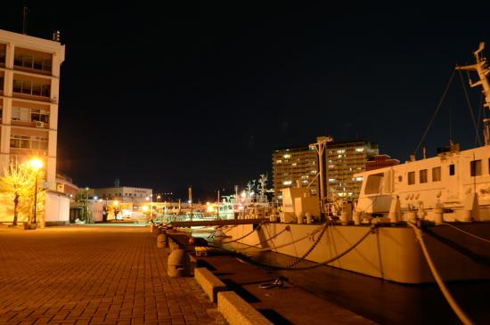 エスパルスドリームプラザ マリンターミナル周辺の夜景4