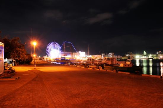 エスパルスドリームプラザ マリンターミナル周辺の夜景6