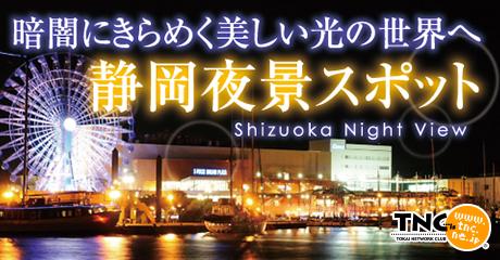 Nightview_460_240
