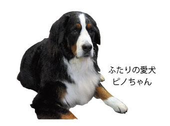 Harishigoto3